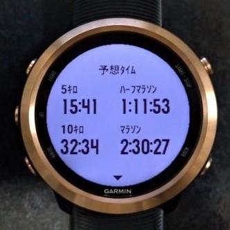 ガーミンの精度について調査!GPS、心拍数、予想タイムは正しいのか?