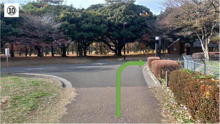 代々木公園クロカン10