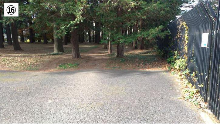 代々木公園クロカン16