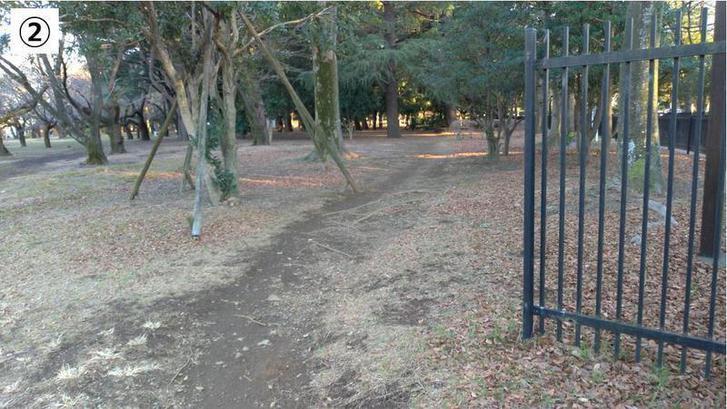 代々木公園クロカン2