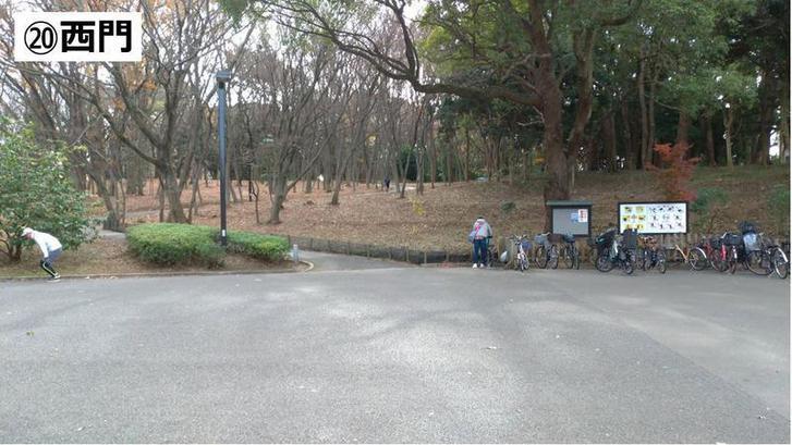 代々木公園クロカン20