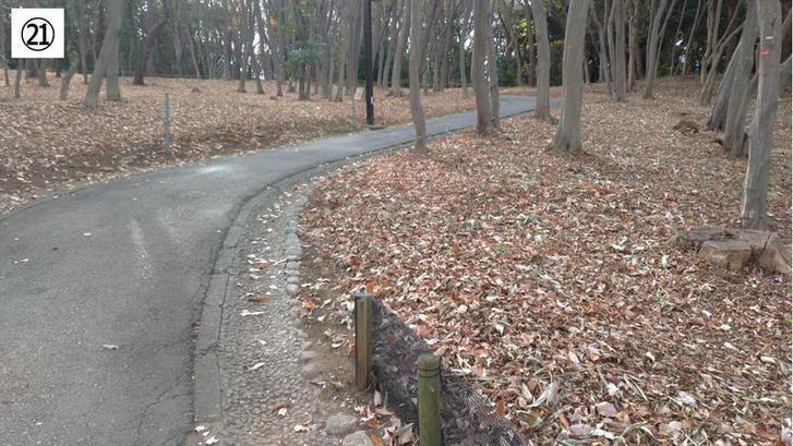 代々木公園クロカン21