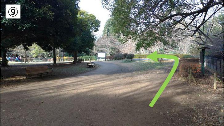 代々木公園クロカン9